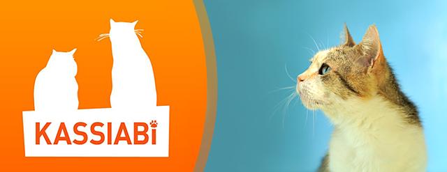 """MTÜ Kassiabi hoiukodudes Tallinnas ootab päriskodu ca 100 tänavatelt leitud või hoolimatute loomaomanike poolt hüljatud kassi ja kassipoega. <a href=""""http://www.help.ee/mtu-kassiabi/"""">Continue reading <span class=""""meta-nav"""">→</span></a>"""