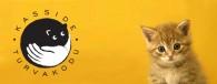 """Meie suurim soov on, et igal kassil oleks oma kodu, et igal kassil oleks turvaline ja ohutu elu. Seda tehes on meil heade inimeste abi vaja. <a href=""""http://www.help.ee/kasside-turvakodu-tallinn/"""">Continue reading <span class=""""meta-nav"""">→</span></a>"""