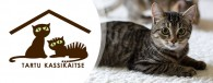 """MTÜ Tartu Kassikaitse on loomaarmastajate vabatahtlike omal algatusel põhinev ühing selleks, et aidata kodututel kassidel leida päris oma kodu.  <a href=""""http://www.help.ee/tartu-kassikaitse/"""">Continue reading <span class=""""meta-nav"""">→</span></a>"""
